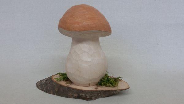 Steinpilz groß