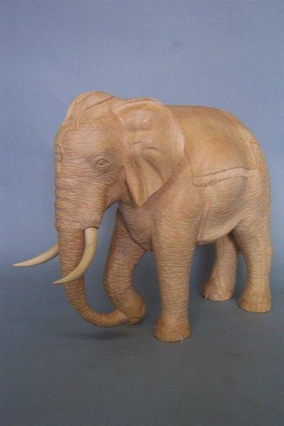 Elefant mit Decke, Linde detailliert natur