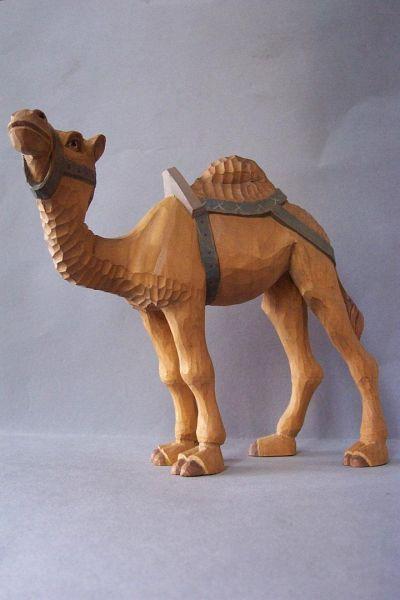 Kamel 1 stehend mit Sattel u. Zaumzeug, Weymouthskiefer lasiert