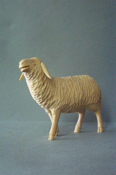 Schaf 1 stehend, Linde datailliert natur