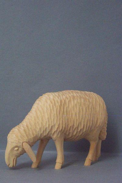 Schaf 2 äsend, Linde detailliert natur
