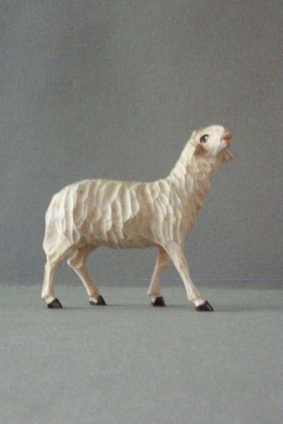 Schaf stehend Weymouthskiefer lasiert