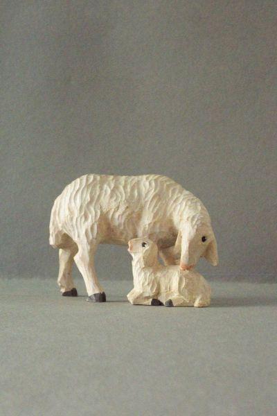 Mutterschaf 1 mit Lamm äsend Weymouthskiefer lasiert