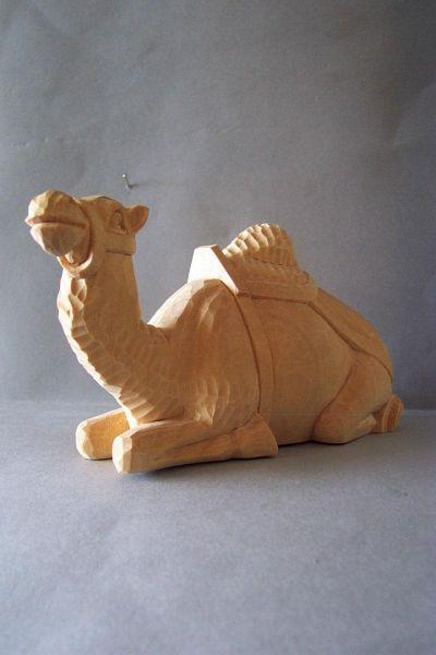Kamel 2 liegend, Weymouthskiefer natur