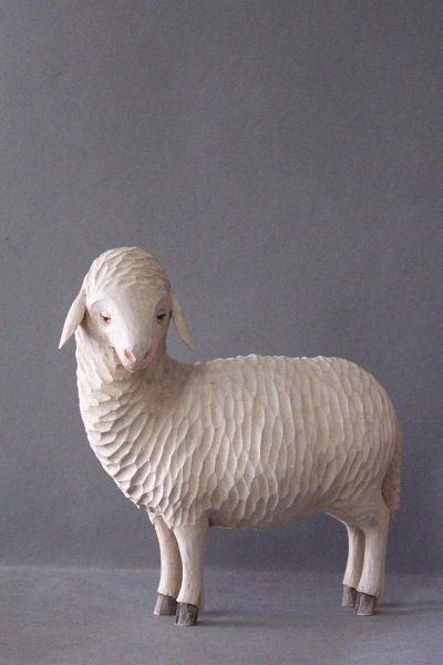 Schaf 1 stehend, Linde detailliert lasiert