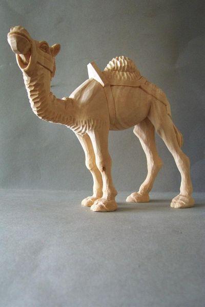 Kamel 1 mit Sattel und Zaumzeug, Weymouthskiefer natur