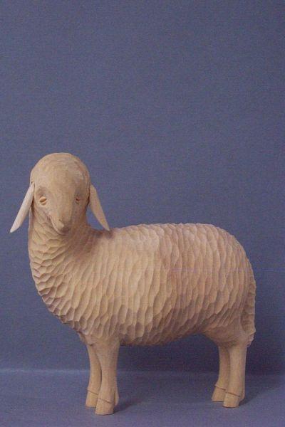 Schaf 1 stehend, Linde detailliert natur