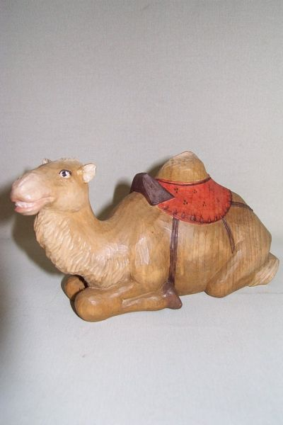 Kamel 2 liegend, Weymouthskiefer lasiert